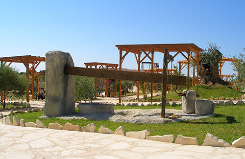 ecological-olive-oil-park