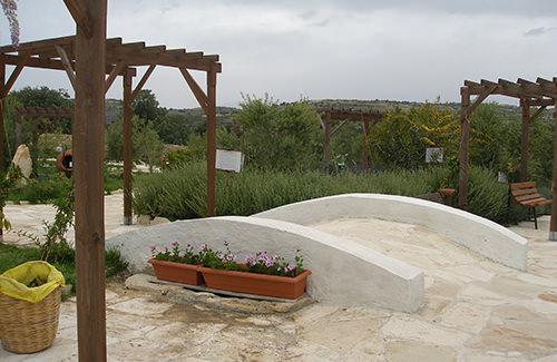 ecological-olive-oil-park-3